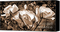 Umber Canvas Prints - Sepia Rose Flower Garden Canvas Print by Jennie Marie Schell