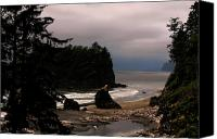 Olympic National Park Canvas Prints - Serene and pure - Ruby Beach - Olympic Peninsula WA Canvas Print by Christine Till