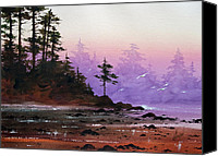 Landscape Framed Print Image Canvas Prints - Serene Coast Sunset Canvas Print by James Williamson