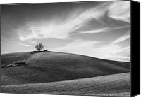 Hillside Canvas Prints - Serenity - Black and White Canvas Print by Larry Marshall