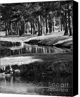 Giclee Trees Canvas Prints - Serenity Canvas Print by Gerlinde Keating - Keating Associates Inc