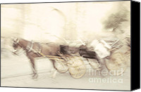 Horse Carriage Canvas Prints - Seville Impression. TNM Canvas Print by Jenny Rainbow
