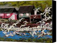 Old Cabins Canvas Prints - Shack Island Seagulls Canvas Print by Carla Stein