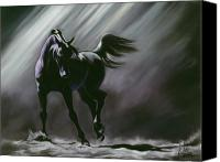 Horses Pastels Canvas Prints - Shadow Dancer Canvas Print by Kim McElroy