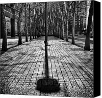 2012 Canvas Prints - Shadows on the ground Canvas Print by John Farnan