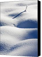 Snow Canvas Prints - Shapes of Winter Canvas Print by Mike  Dawson
