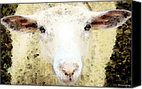 Australian Animal Canvas Prints - Sheep Art - Ewe Rang Canvas Print by Sharon Cummings