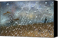 Photoart Canvas Prints - Shelter From The Storm Canvas Print by Ed Hall