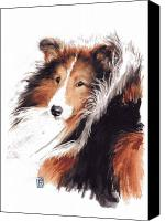 Dog Art Canvas Prints - Sheltie Canvas Print by Debra Jones