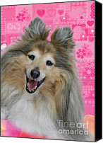 Pet Portrait Canvas Prints - Sheltie Smile Canvas Print by Christine Till