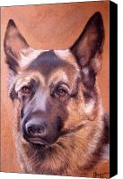Pet Portrait Pastels Canvas Prints - Shepard Canvas Print by Harvie Brown