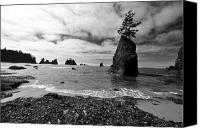 Olympic National Park Canvas Prints - Shi Shi Beach Canvas Print by Ian Stotesbury