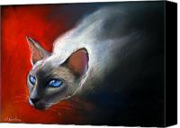 Pet Portrait Pastels Canvas Prints - Siamese Cat 7 Painting Canvas Print by Svetlana Novikova