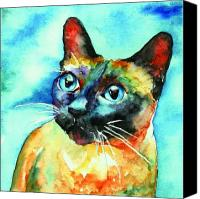 Cat Canvas Prints - Siamese Cat Canvas Print by Christy  Freeman