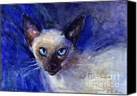 Austin Pet Artist Canvas Prints - Siamese Cat  Canvas Print by Svetlana Novikova