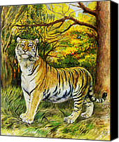 Natalie Berman Canvas Prints - Siberian Tiger  Canvas Print by Natalie Berman