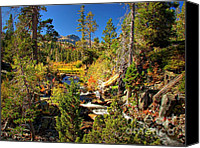 Sierra Canvas Prints - Sierra Nevada Fall Beauty at Lily Lake Canvas Print by Scott McGuire