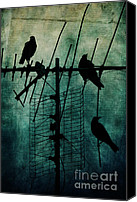 Crows Canvas Prints - Silent Threats Canvas Print by Andrew Paranavitana