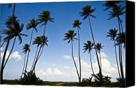 Tropical Beach Canvas Prints - Silhouettes Canvas Print by Sarita Rampersad