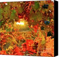 Blue Grapes Canvas Prints - Silverado Magic sq Canvas Print by Mars Lasar