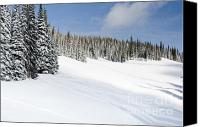 Winter Canvas Prints - SILVERSTAR MEADOW snow covered alpine meadow silver star Canvas Print by Andy Smy