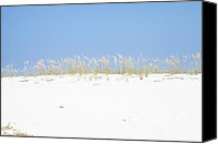 Beach Photograph Canvas Prints - Simplicity Canvas Print by Toni Hopper