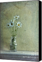 Stilllife Canvas Prints - Simply Daisies Canvas Print by Priska Wettstein