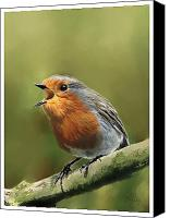 Song Mixed Media Canvas Prints - Sing Red Robin Sing Canvas Print by Michael Greenaway