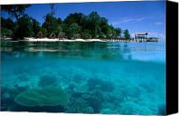 Robinson Canvas Prints - Sipadan Island in Malaysia Canvas Print by Ed Robinson - Printscapes