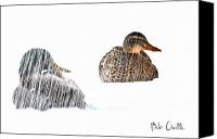 Fun Canvas Prints - Sitting Ducks in a blizzard Canvas Print by Bob Orsillo