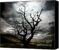 Stormy Photo Canvas Prints - Skeletal Tree Canvas Print by Meirion Matthias