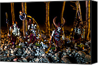 Fantasy Photo Canvas Prints - Skeletons Patrolling The Cursed Forest Canvas Print by Marc Garrido
