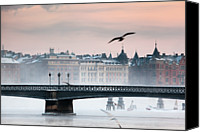 Seagull Photo Canvas Prints - Skeppsholmsbron, Stockholm Canvas Print by Hannes Runelöf