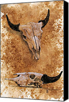 Buffalo Drawings Canvas Prints - Skulls Canvas Print by Debra Jones