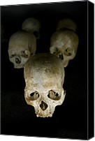 21st Century Canvas Prints - Skulls Of Rwanda Genocide Victims Canvas Print by Tony Camacho