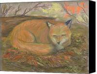 Fox Pastels Canvas Prints - Sleeping Fox Canvas Print by Lisa Guarino
