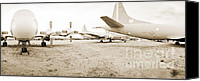 Regeneration Photo Canvas Prints - Sleeping P3s AMARC Canvas Print by Jan Faul