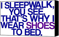 Luna Canvas Prints - Sleepwalk so I Wear Shoes to Bed Canvas Print by Jera Sky