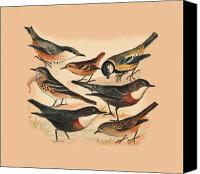 Alpine Mixed Media Canvas Prints - Small Birds Canvas Print by Eric Kempson