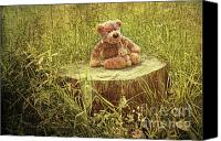 Teddybear Canvas Prints - Small little bears on old wooden stump  Canvas Print by Sandra Cunningham