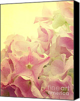 Pink Flower Canvas Prints - Small Stars Canvas Print by Kristin Kreet