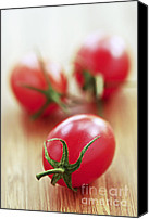 Tomatoes Tapestries Textiles Canvas Prints - Small tomatoes Canvas Print by Elena Elisseeva