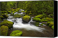 Gatlinburg Canvas Prints - Smoky Mountains Paradise - Great Smoky Mountains Gatlinburg TN Canvas Print by Dave Allen