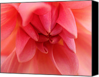 Flowers Canvas Prints - Smooth Canvas Print by Roberto Alamino