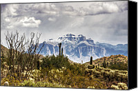 The Supes Canvas Prints - Snow Atop The Superstitions Canvas Print by Saija  Lehtonen