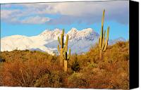 Buy Framed Prints Canvas Prints - Snow Covered Four Peaks Canvas Print by James Bo Insogna