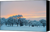 Albuquerque Canvas Prints - Snow Covered Trees At Sunset Canvas Print by Nancy Newell