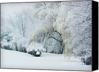 With Photo Canvas Prints - Snow Dream Canvas Print by Julie Palencia