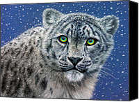 Charcoal Drawing Canvas Prints - Snow Leopard Canvas Print by Callie Fink