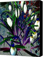 Akermans Art Canvas Prints - Snowdrops in Abstract  Canvas Print by Beth Akerman